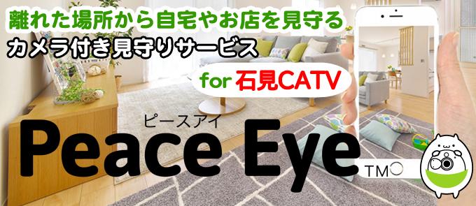 月々990円 離れた場所から自宅やお店を見守る クラウド型スマートホームPeace Eye(ピースアイ) for CATV